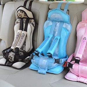 Picture for category Car Seat Accessories