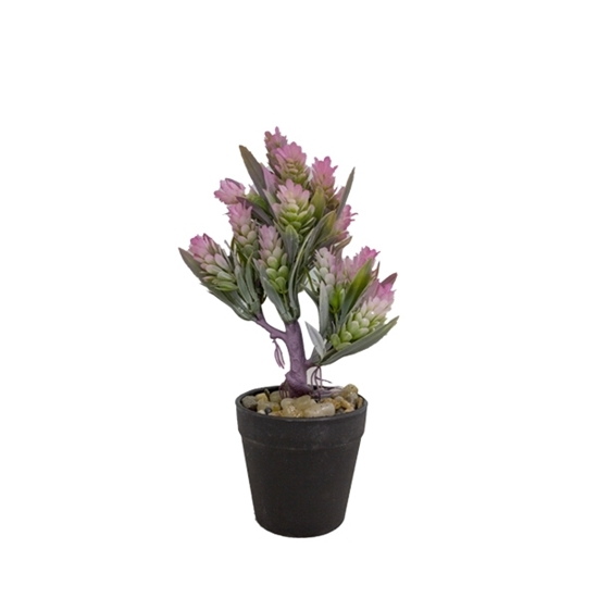 Picture of Artificial Potted Plant - 25 x 9 Cm