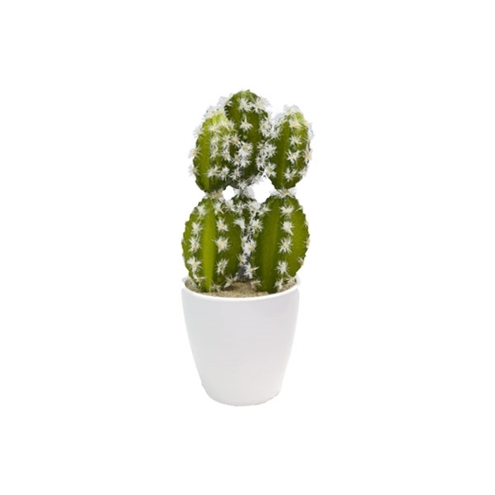 Picture of Artificial Potted Plant - 23 x 7 Cm