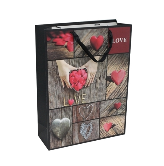 Picture of Printed Gift Bag - 30 x 41.5 x 12 Cm