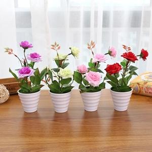 صورة لقسم نباتات زينة اصطناعية
