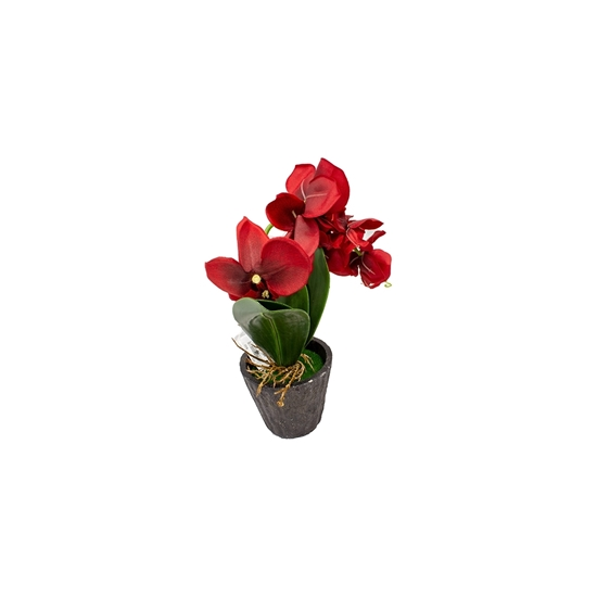 Picture of Orchid Artificial Flower - 35 Cm