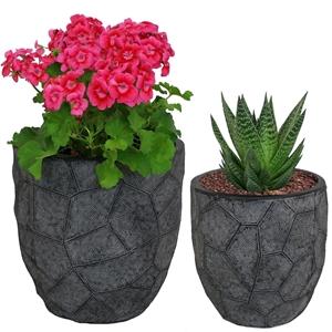 صورة لقسم آنية الزهور وآنية النباتات